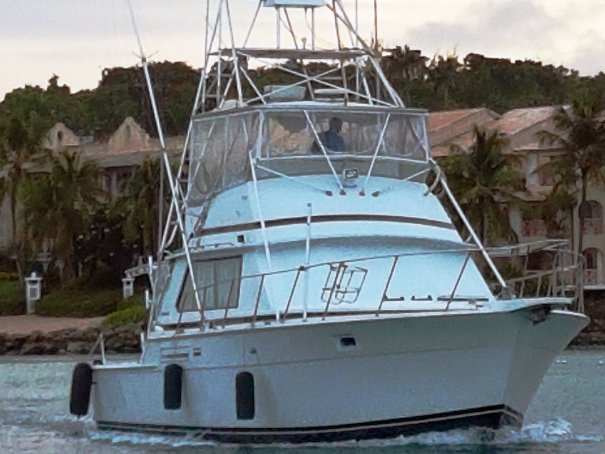 42ft Bertram - Reel Crazy Too